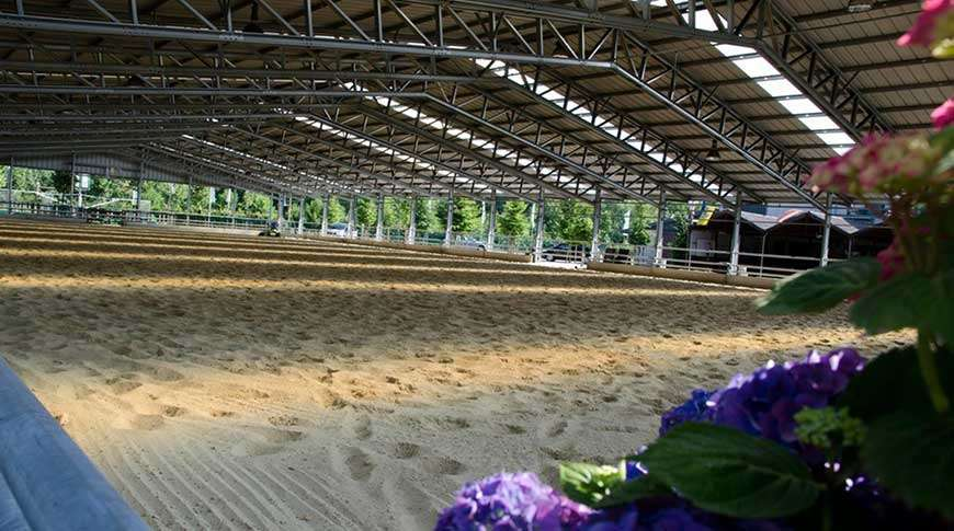 horse arenas steel buildings metal frame PEB